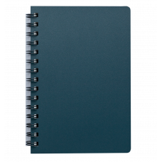"Книжка записн. на пруж. ""STATUS"" А5, 80л.,кл., пластик.обл., графит"